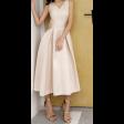 فستان الفيونكة الخلفية الأنيق